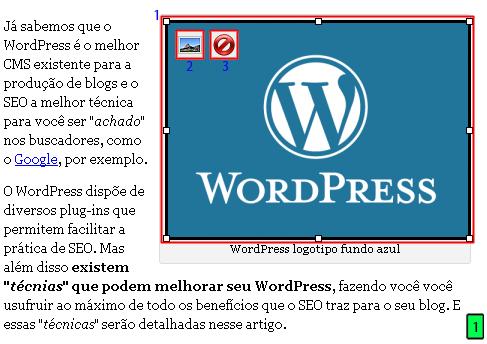 WordPress – Adicionar Posts 8 Edição De Imagens