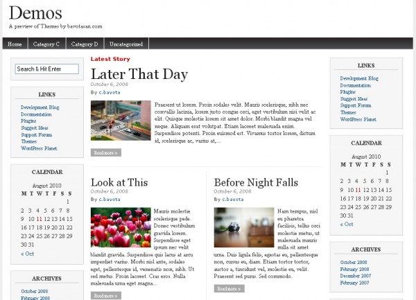 WordPress Theme Magazine Basic