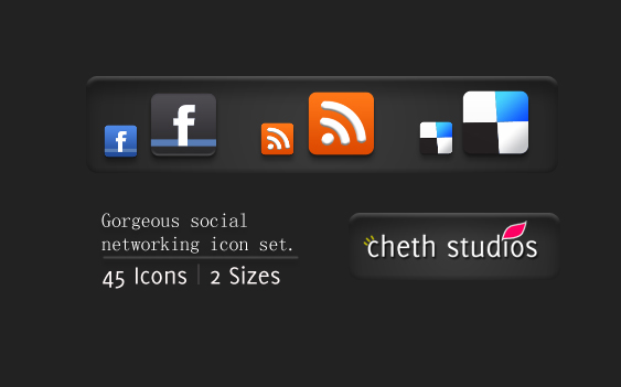 gorgeous social networking icon set