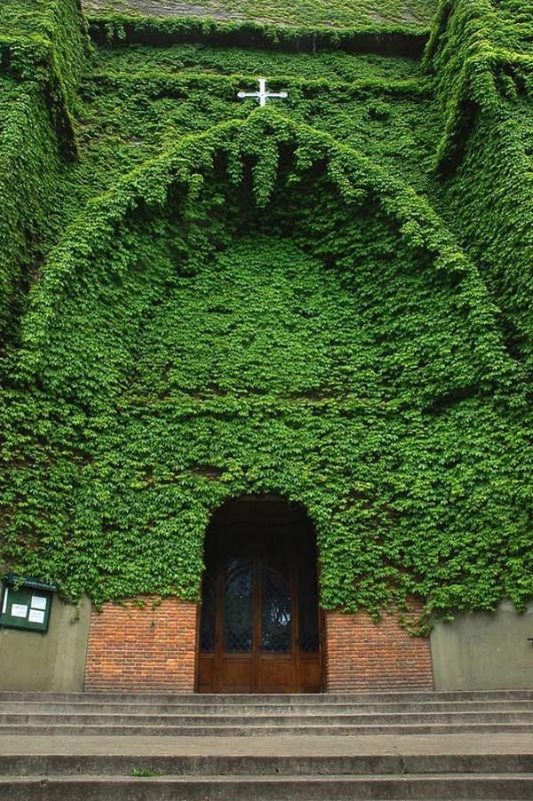 a igreja verde argentina